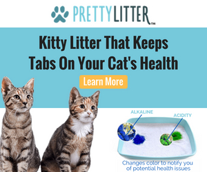 Pretty Litter Color Changing Cat Litter 10 Off With Code Aff10 At